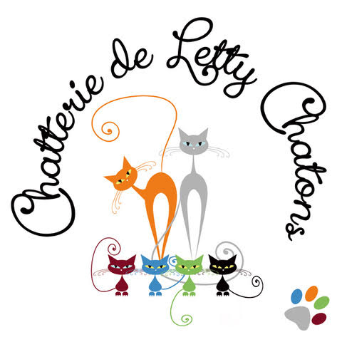 Chatterie de Letty Chatons